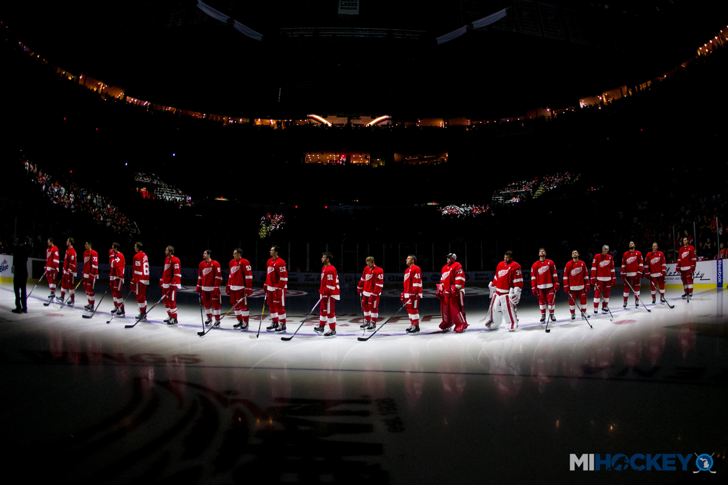 c6846623815 A look at the Red Wings' expansion draft 'available players' list