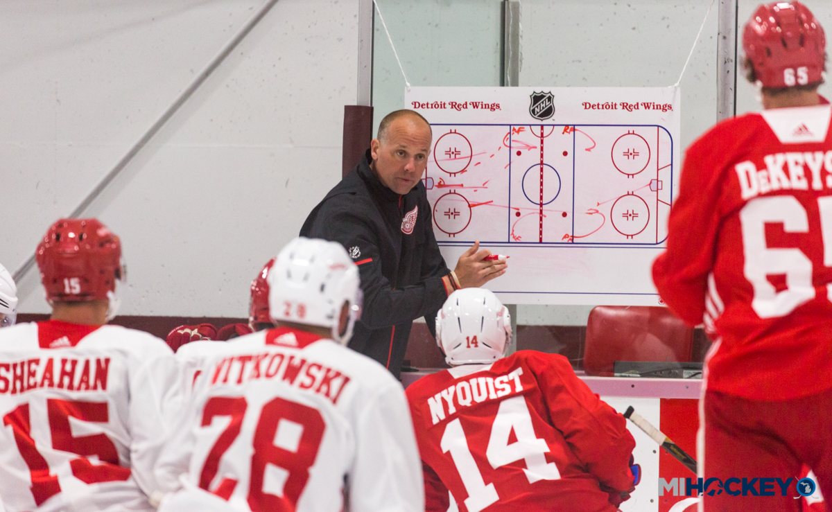 Red Wings announce 2019 training camp roster