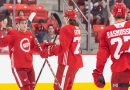 Red Wings announce 2019 Development Camp details