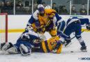 Teams announced for 2020 MIHL Prep Hockey Showcase