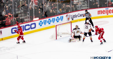PHOTOS: Red Wings beat Ducks on Military Appreciation Night