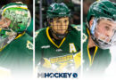 Northern Michigan's Loggins, Beaulieu, Tolvanen claim WCHA awards