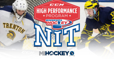 High School Mihockey