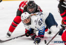 Women's hockey players join forces to create new players' association