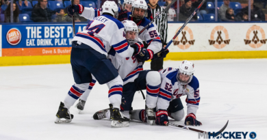 USA Hockey Arena, Ann Arbor Ice Cube to host 2020 Under-18 Worlds