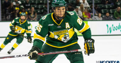 Potulny, Wildcats will lean on veteran leadership to guide NMU's incoming youth