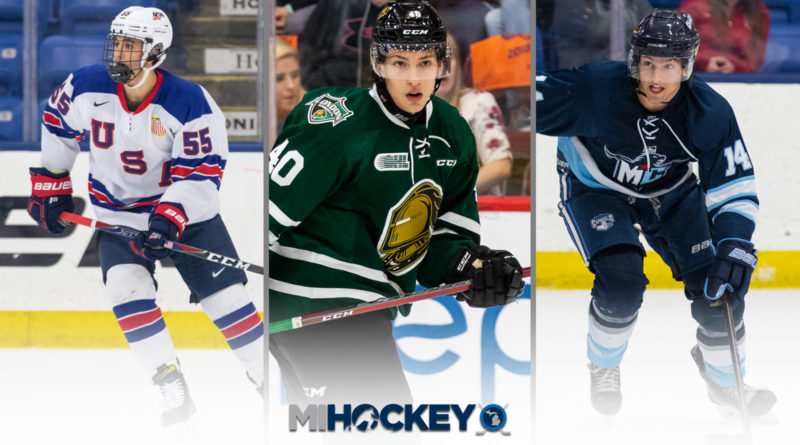 Jacob Truscott, Antonio Stranges and Kristof Papp are just some of the Michigan names featured on NHL Central Scouting's first 'Players to Watch' list for the 2020 NHL Draft. (Photos by Michael Caples/MiHockey)