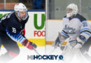 Rolston, McCarthy named USHL players of the week