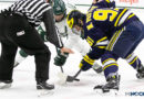 Big Ten announces November start date for hockey season
