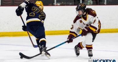 VIDEO: 2019 Michigan girls' high school state championship